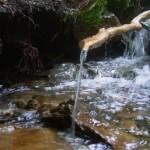 Wasserrinnen am Bach